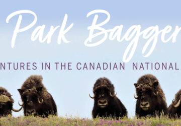 Park Bagger book banner